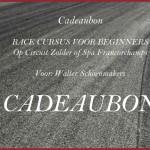 Cadeaubon Race Cursus Voor Beginners - Leren racen op circuit spa francorchamps of zolder in een race auto